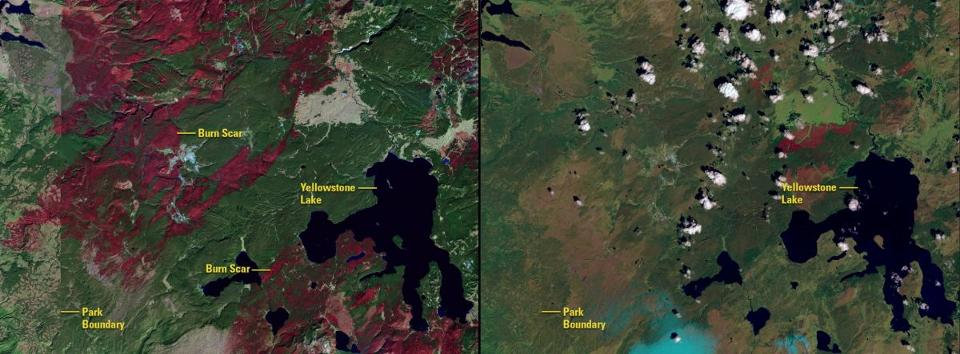 NASA's Images of Change: Yellowstone National Park fire and fire scarring (Credit: NASA)